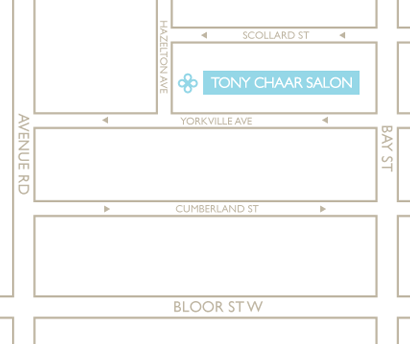 A map of the where Tony Chaar Salon is located